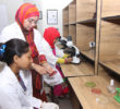 Microbiology-4